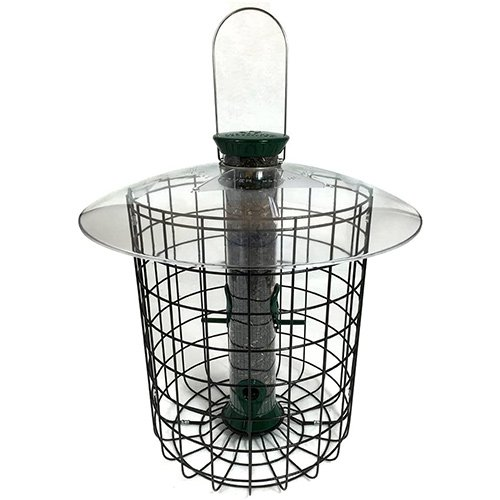 Droll Yankees Domed Cage Bird Feeder Review
