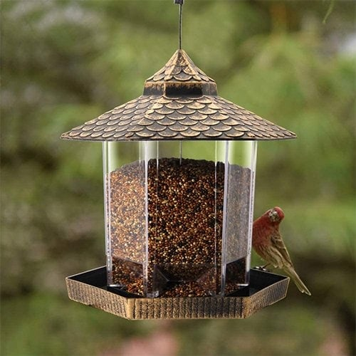 Twinkle Star Wild Bird Feeder Review