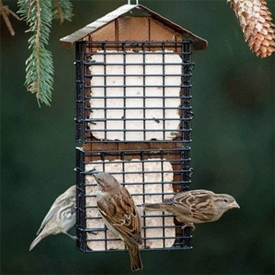 Stokes Select 38129 Cake Suet Buffet Bird Feeder