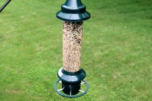 Squirrel Buster Plus Squirrel-proof Bird Feeder