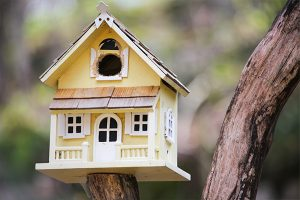 close-up-view-of-a-large-birdhouse