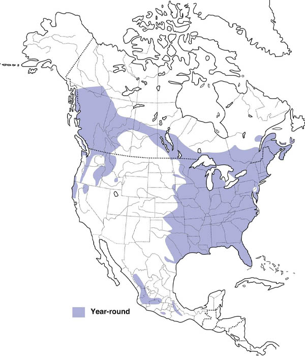 Barred Owl map